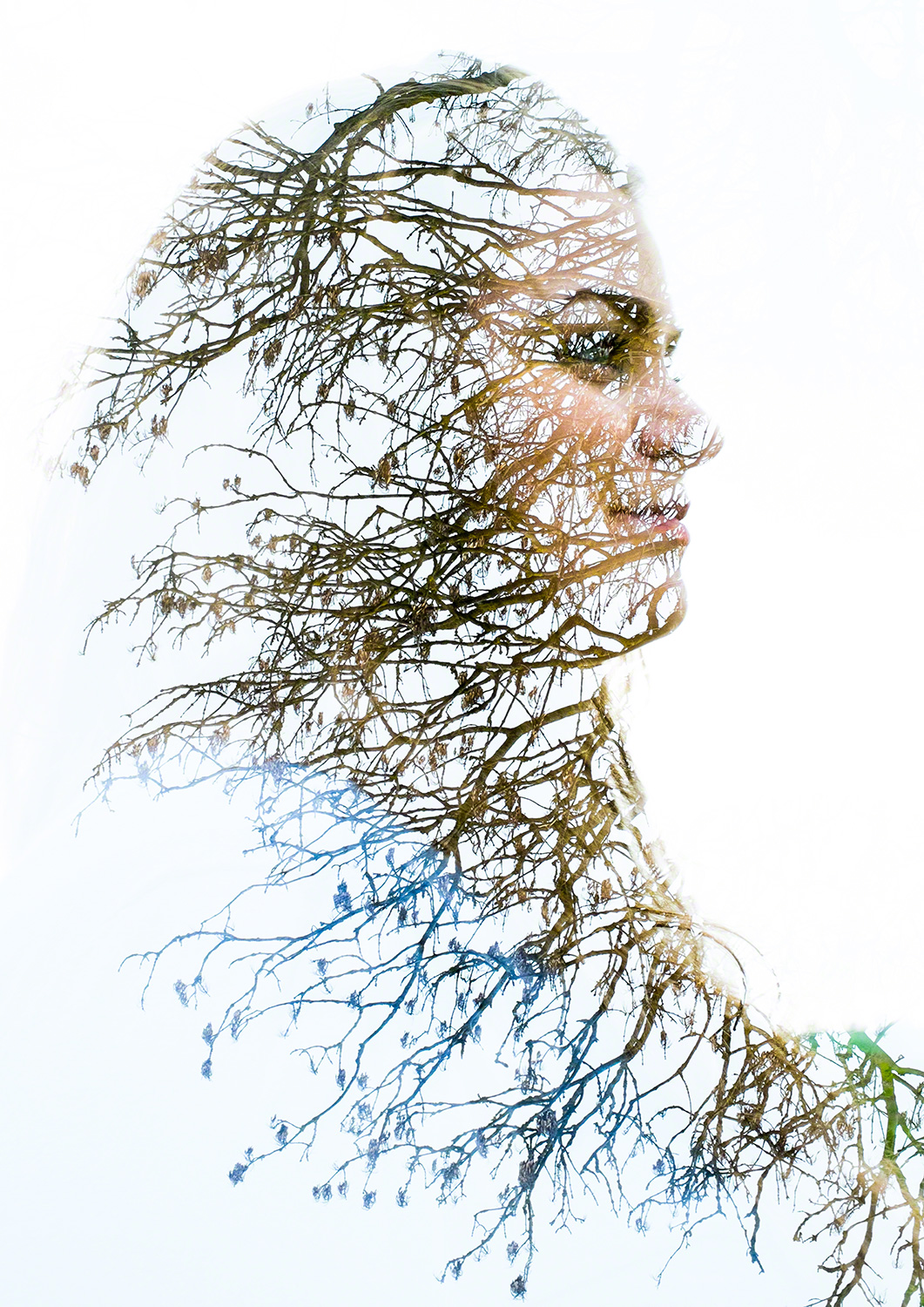 This is one of a series of double exposure images that I created as part of a Fine Art project for my degree.